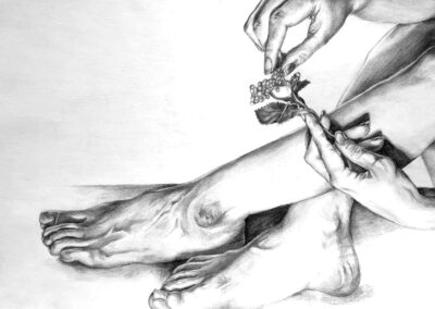 Estudio anatómico. Catherine Vázquez